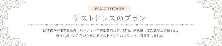 ゲストドレスのプラン